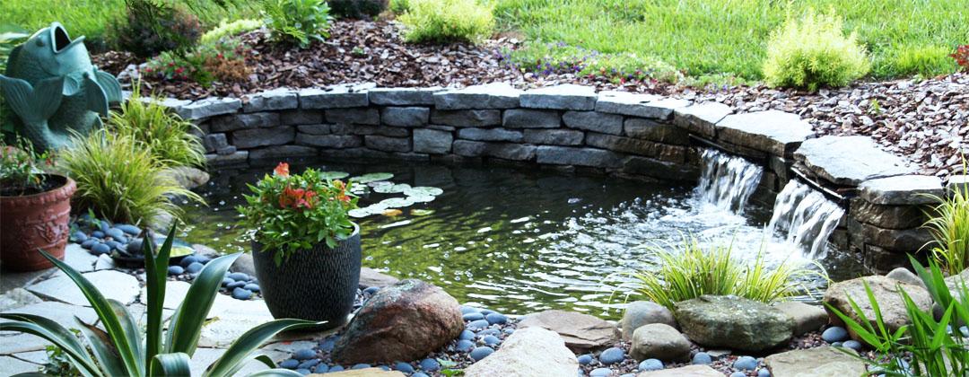 Green Pond Aerobics Fish Aquaculture Irrigation And